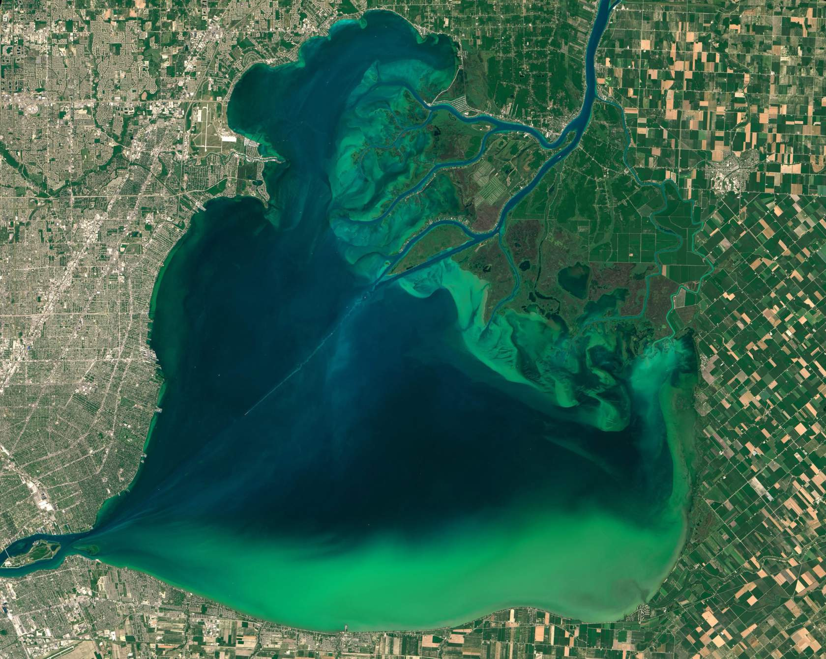 epa04871978 A handout image dated 28 July 2015 and made available by NASA 04 August 2015 showing an image captured by Operational Land Imager (OLI) on the Landsat 8 satellite of algal blooms around the Great Lakes, visible as swirls of green in this image of Lake St. Clair and in western Lake Erie. Earlier in July, NOAA scientists predicted that the 2015 season for harmful algal blooms would be severe in western Lake Erie. They suggest that algae growth in western Lake Erie could rival the blooms of 2011. Algae in this basin thrive when there is an abundance of nutrients (many from agricultural runoff) and sunlight, as well as warm water temperatures. The season runs through summer and peaks in September.  EPA/NASA / Goddard's MODIS Rapid Response Team / HANDOUT  HANDOUT EDITORIAL USE ONLY