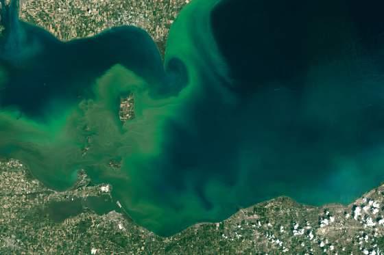 lake-erie-algal-blooms-2015 NASA Earth Observatory